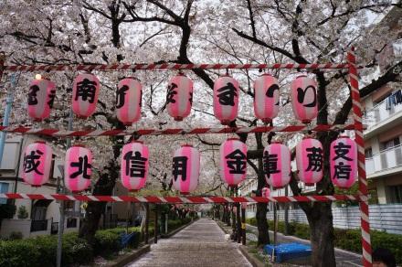 Auf den Lampions sind die Namen der Bewohner des Viertels zu lesen.
